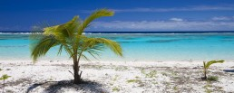 Perfection, Maré, New Caledonia - Steve Rutherford Landscape Photography Art Gallery