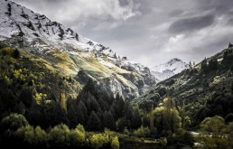 Shotover's Garden, Queenstown - Steve Rutherford Landscape Photography Art Gallery
