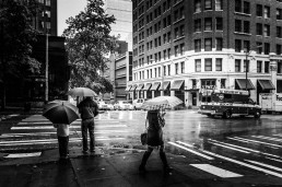Rain, Seattle - Steve Rutherford Landscape Photography Gallery
