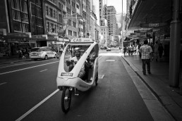 Free Ride, Sydney, Australia - Steve Rutherford Landscape Photography Art Gallery