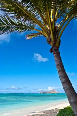 Mokolua, Kailua, Oahu - Steve Rutherford Landscape Photography Art Gallery