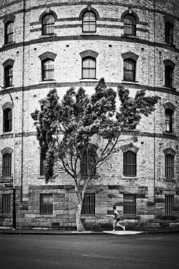 Natural History, The Rocks, Sydney - Steve Rutherford Landscape Photography Gallery